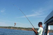 thumbnail-7 Silcar 32.0 feet, boat for rent in Lisboa, PT