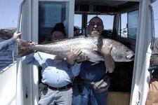 thumbnail-7 starfisher 27.6 feet, boat for rent in Lisboa, PT