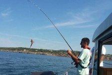 thumbnail-6 starfisher 27.6 feet, boat for rent in Lisboa, PT