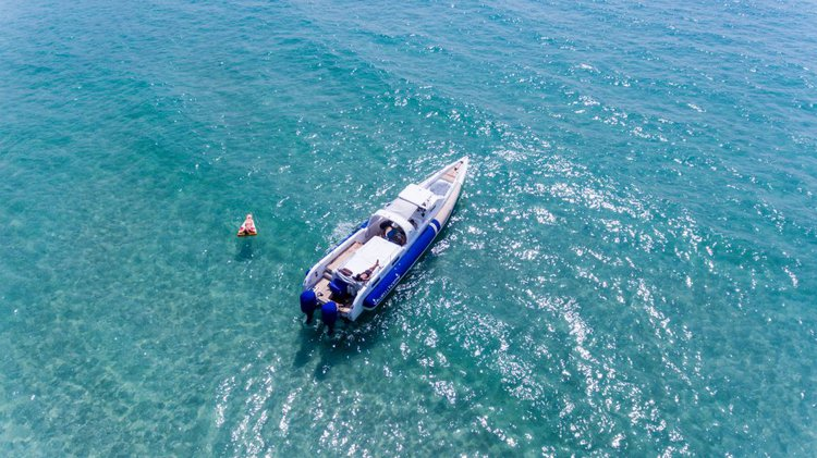 Boat for rent Interceptor 50.0 feet in Yacht Haven Marina (Phuket), Thailand