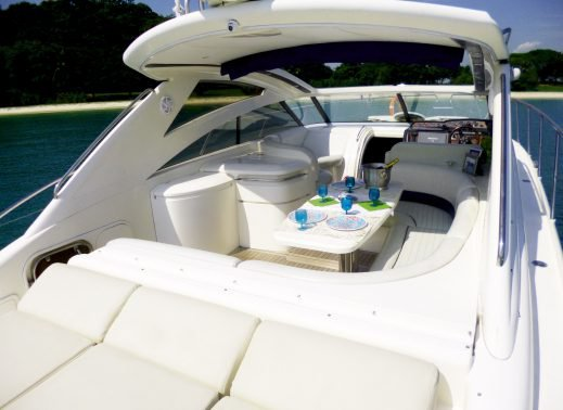 Up to 14 persons can enjoy a ride on this Convertible boat