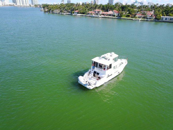 Discover Miami Beach surroundings on this 500 Carver boat