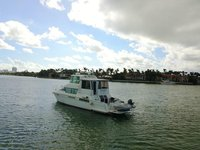 thumbnail-5 Carver 50.0 feet, boat for rent in Miami Beach,