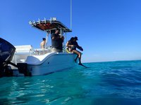 thumbnail-28 Sea Pro 23.0 feet, boat for rent in Nassau, BS