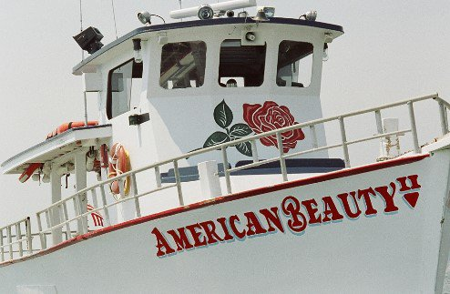 Up to 33 persons can enjoy a ride on this Pilothouse boat