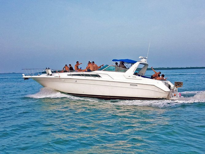 Boat for rent Sea Ray 44.0 feet in MIAMI RIVER MARINA, FL