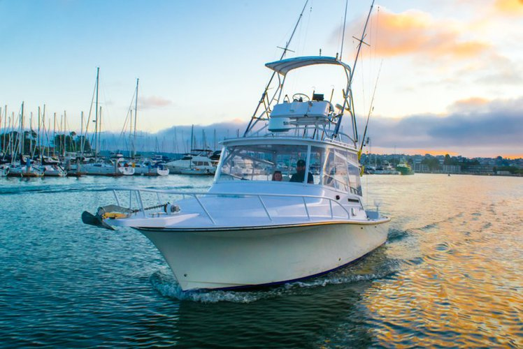 Party Cruiser in the Bay for Up To 12 People ($250/hour)