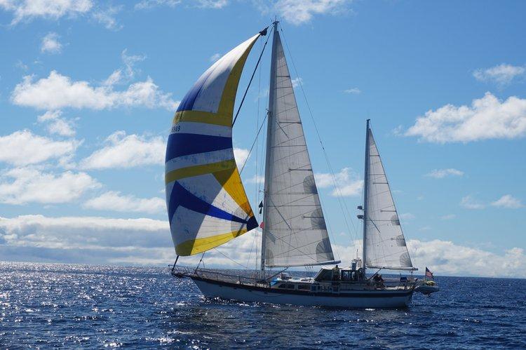 Big fun on a big boat in the Sea of Cortez