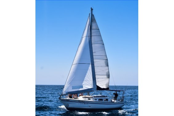This 30.0' NewPort cand take up to 8 passengers around Cabo San Lucas