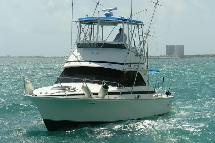 Discover Cancún surroundings on this 38 Betram boat