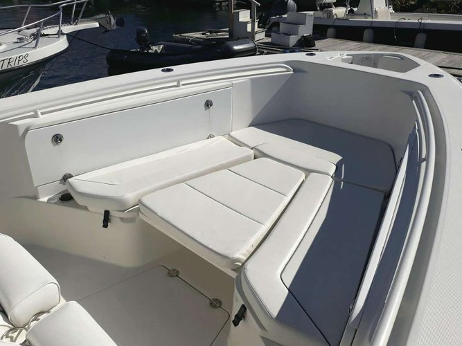 Center console boat for rent in Road Town