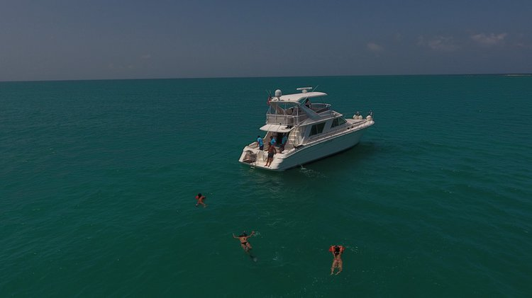 Climb aboard this 55' SeaRay Flybridge for a great experience!
