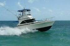 Hop aboard this amazing 38' motor boat rental in Mexico!