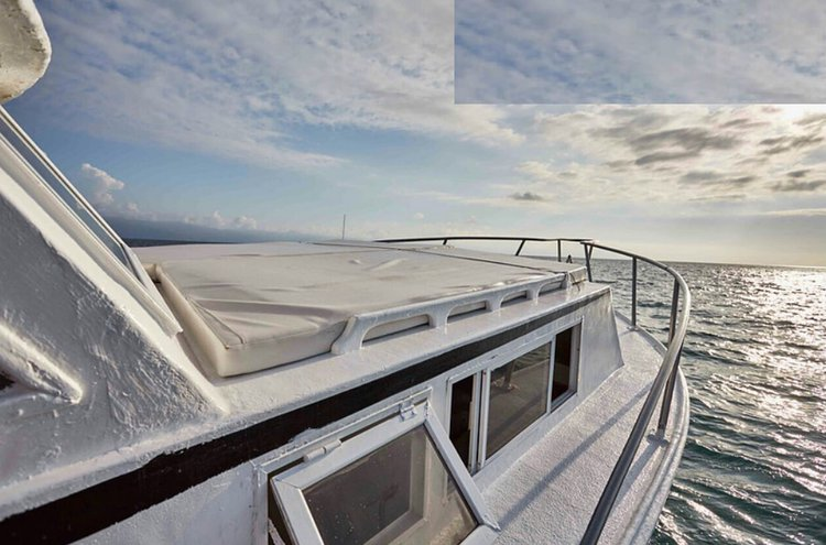 Up to 12 persons can enjoy a ride on this Trawler boat