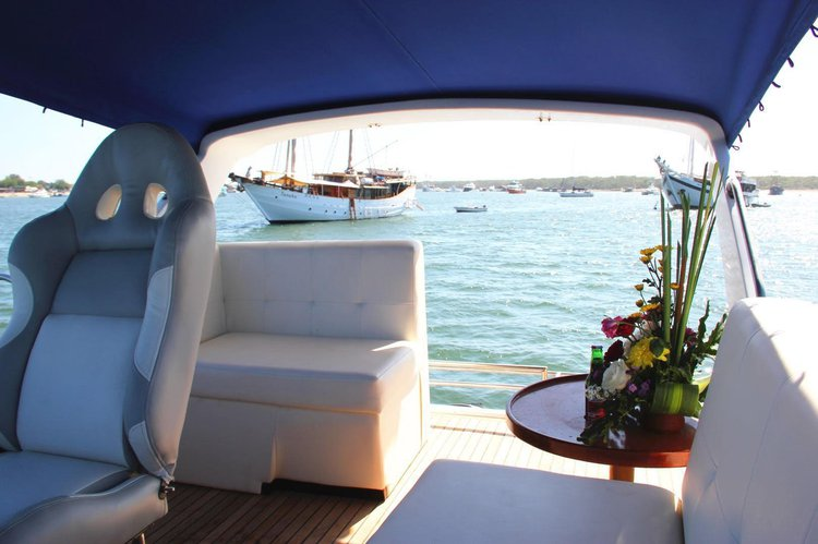 Up to 30 persons can enjoy a ride on this Cruiser boat