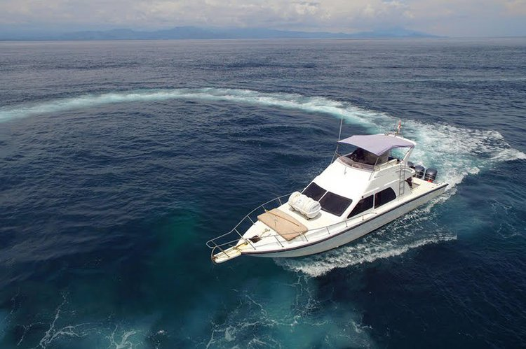 Charter this amazing motor boat in Nusa Dua