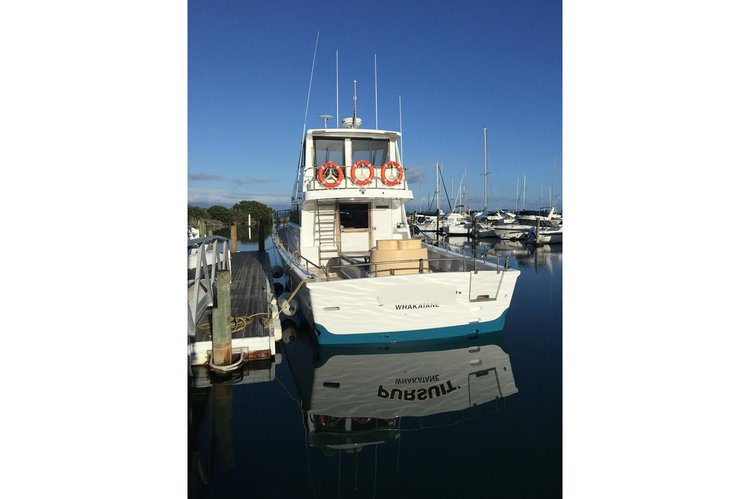 Boat rental in Bay Of Plenty,
