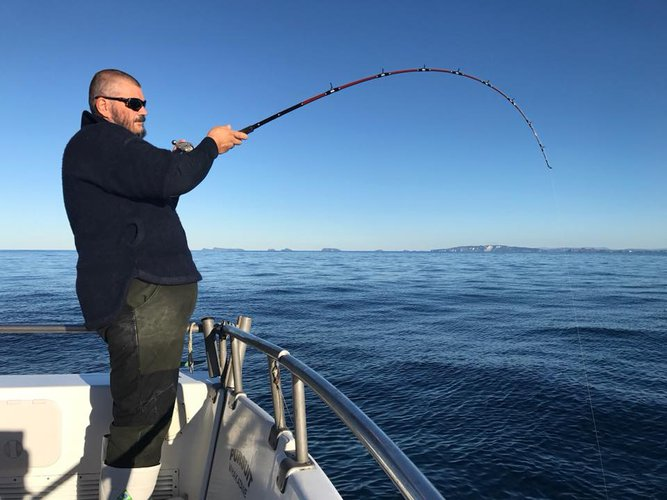 Offshore sport fishing boat rental in Bay Of Plenty, New Zealand