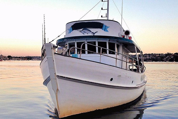 Have fun in the sun on this Balmain motor yacht charter