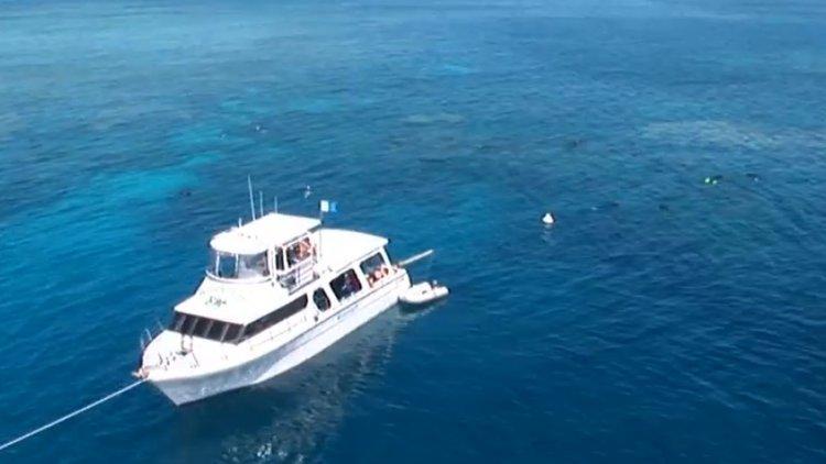 Boat for rent Custom 60.0 feet in Port Douglas, Australia