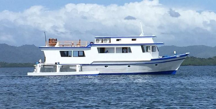 Boating is fun with a Motor yacht in Puerto Princesa