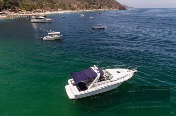 Boat for rent Sea ray 38.0 feet in Marina Nuevo Vallarta,