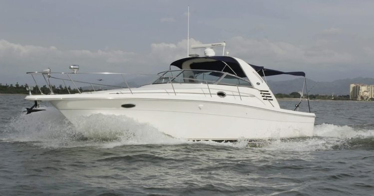 Sea Ray boat for rent in Nayarit