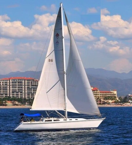 Take this awesome sailing yacht for a spin!