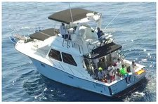 Relax and have fun of fishing on this gorgeous motor boat charter