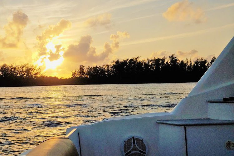 Discover Fort Lauderdale surroundings on this Signature Chaparral boat