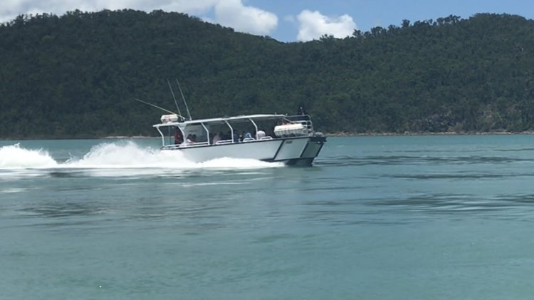 Boat for rent Custom 30.0 feet in Whitsundays,