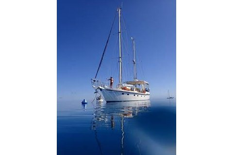 Up to 50 persons can enjoy a ride on this Motorsailer boat
