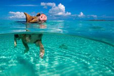 Full Day Excursion To Pig Beach Exuma