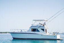 Deep Sea Fishing in the Bahamas!
