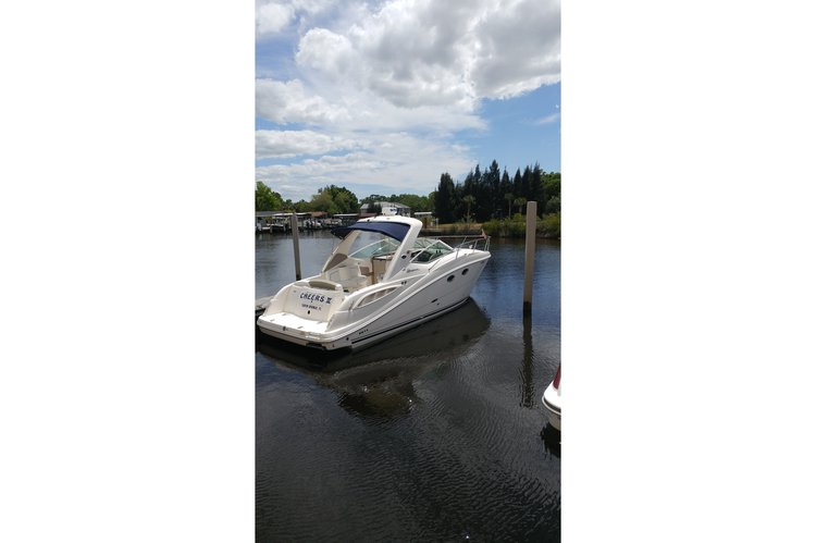 This 31.0' Sea Ray cand take up to 10 passengers around Tarpon Springs