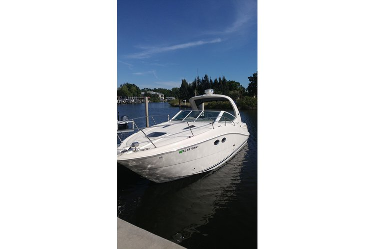 Sea Ray boat for rent in Tarpon Springs