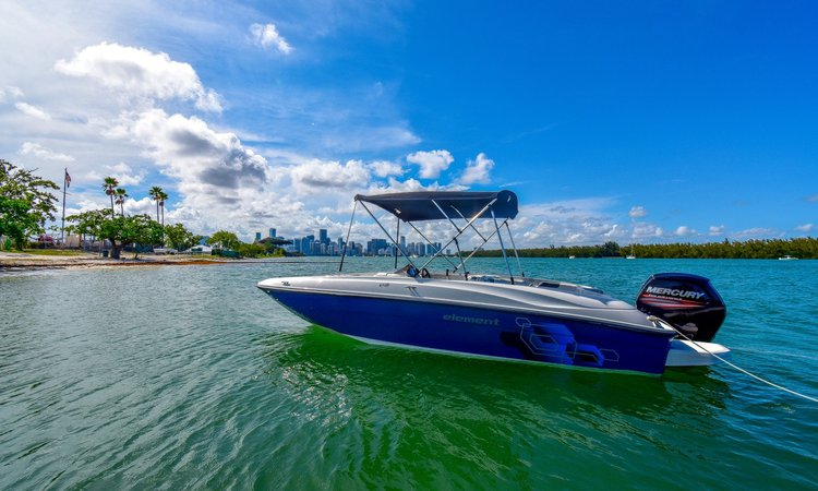 Deck boat boat for rent in Key Biscayne