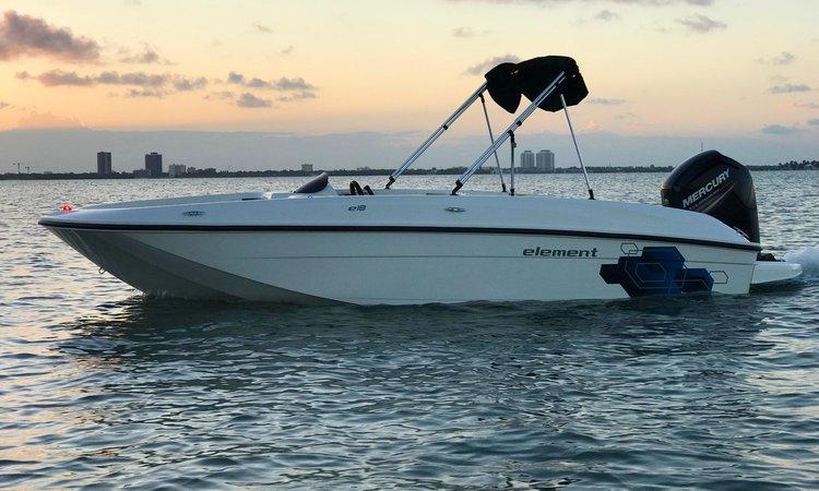 Boat for rent Bayliner 18.0 feet in Rickenbacker Marina, FL
