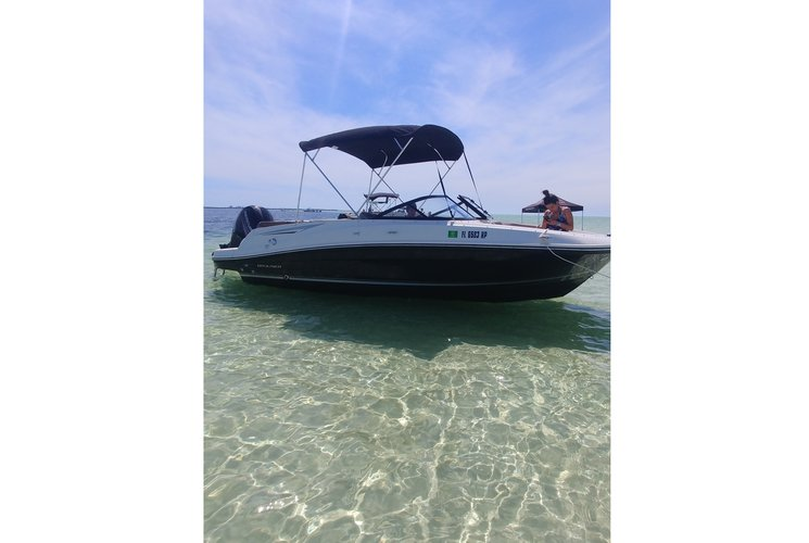 Bayliner's 20.0 feet in Holiday