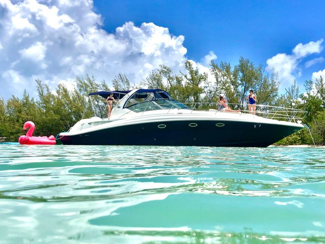 Sea Ray's 45.0 feet in Miami