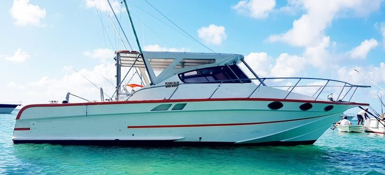 Have fun in the sun on this Pereybere motor boat charter