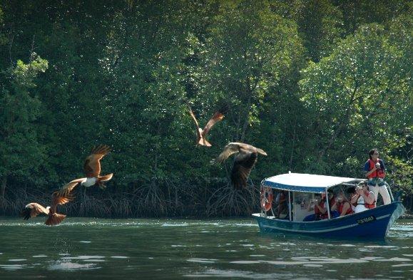 Boat rental in Langkawi,