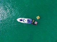 Yacht Party Rental - 38' Sea Ray!