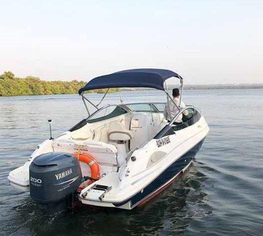 Discover Panjim surroundings on this 232 Custom boat