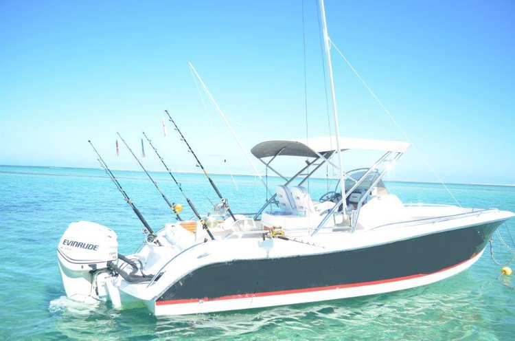 Boat for rent Custom 8.0 feet in Bel Ombre, Mauritius