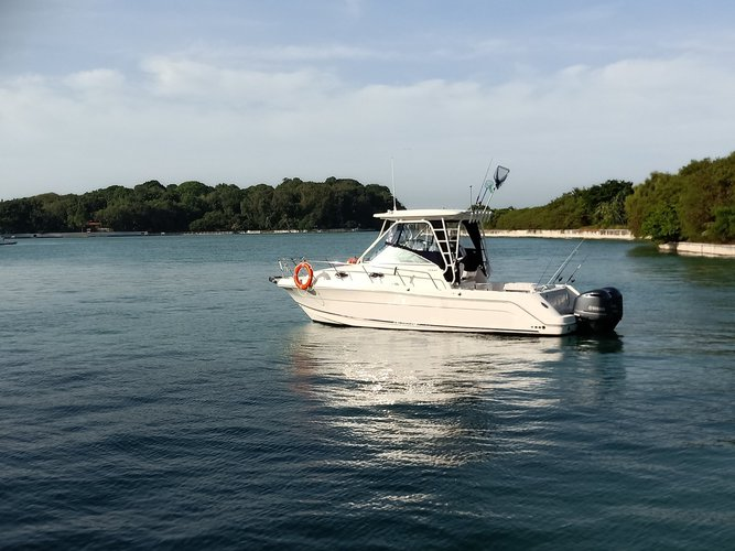 Have fun on board our motor boat charter in Singapore