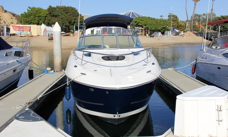 Sea Ray boat for rent in Newport Beach