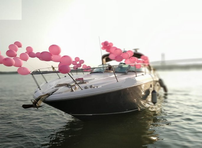 Discover Panjim surroundings on this 330 Searay boat