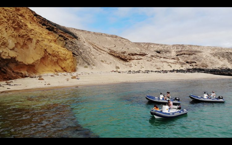 Rigid inflatable boat rental in Lanzarote, Spain
