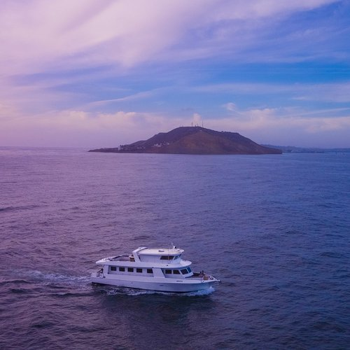 Up to 49 persons can enjoy a ride on this Motor yacht boat